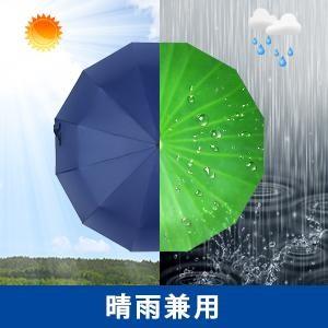 f:id:mikamimayumi0922:20210616075623j:image