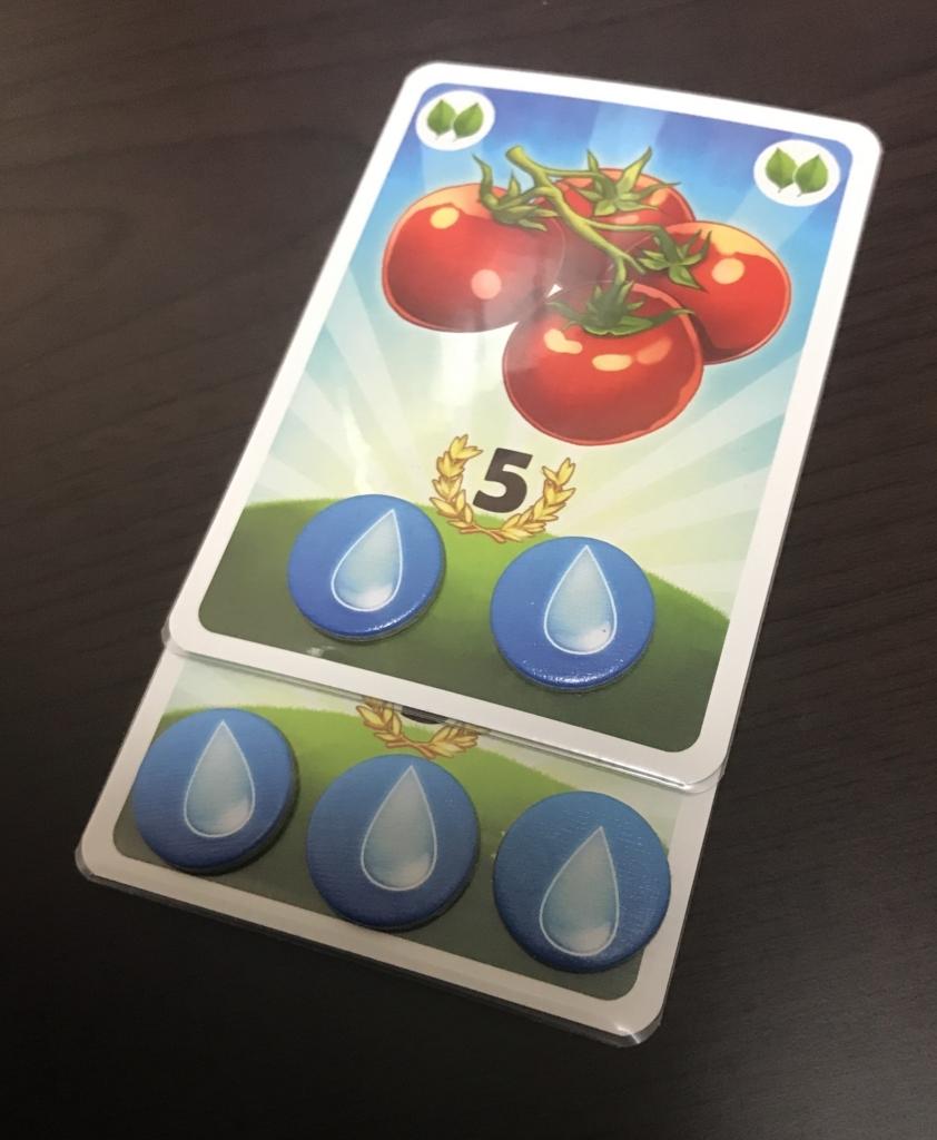 トマトカード‗水トークン配置