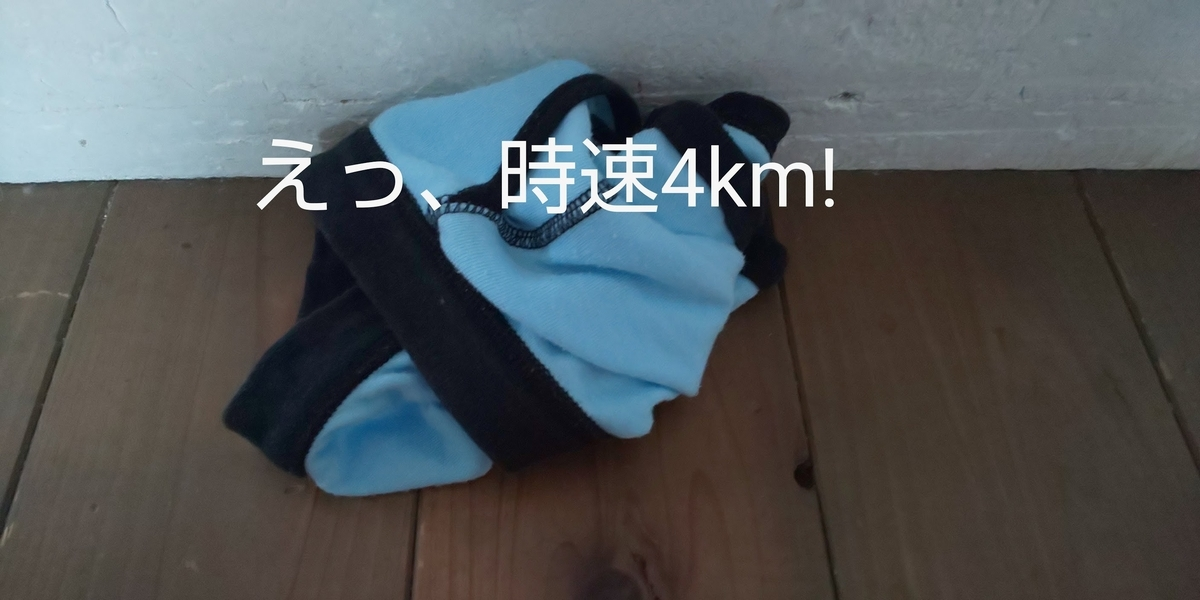 f:id:mikan-iro:20200323130516j:plain