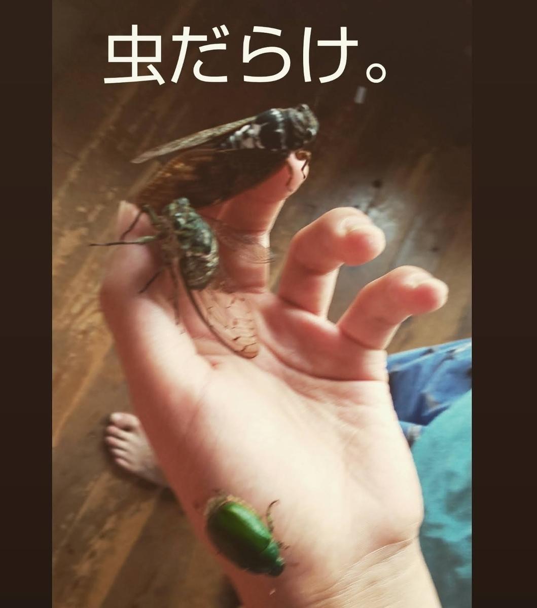 f:id:mikan-iro:20200811202439j:plain