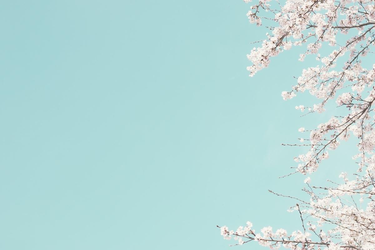 f:id:mikan-iro:20210101214809j:plain