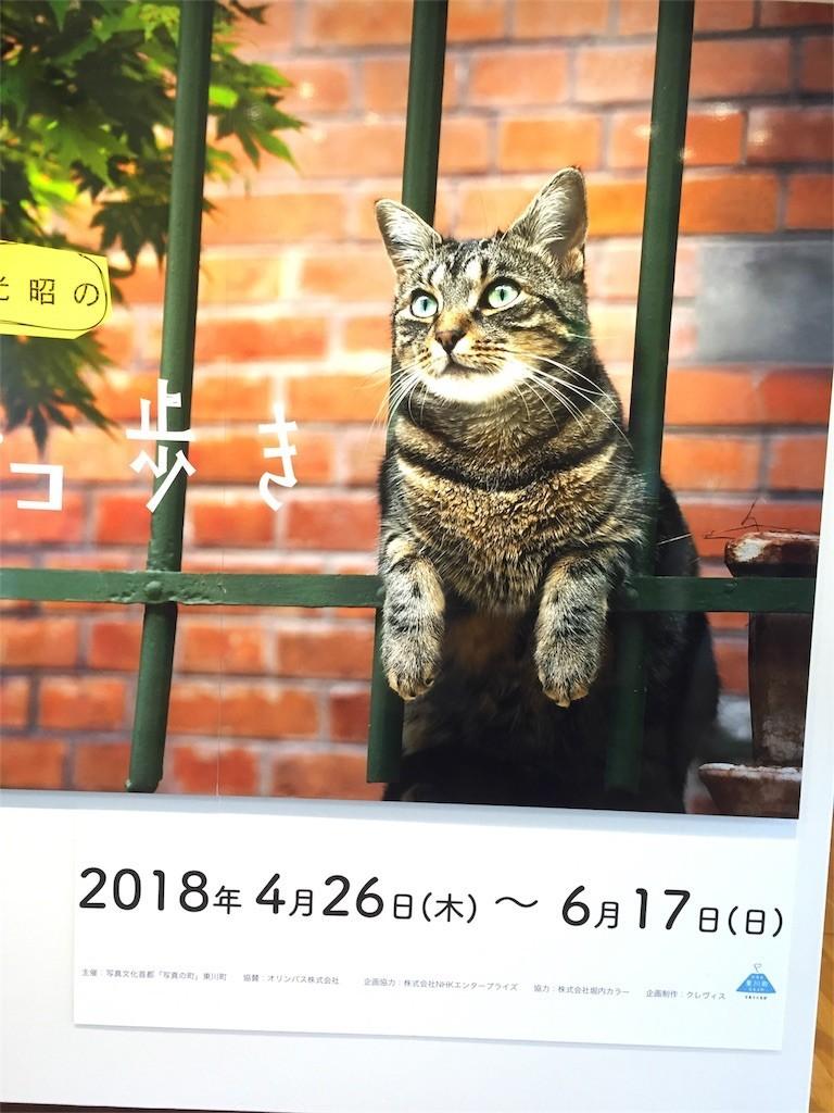 f:id:mikanblog:20180511082653j:image