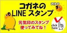 f:id:mikancyama:20190202153546j:plain