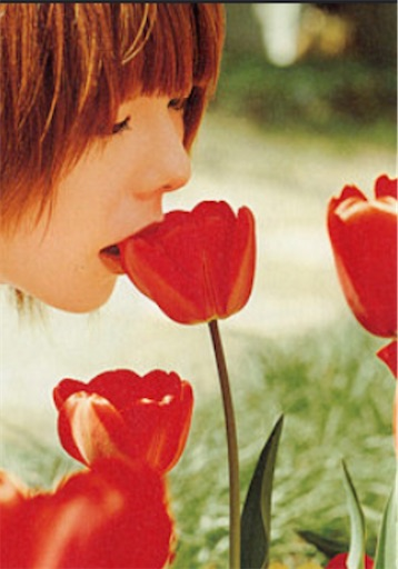 f:id:mikanotabi:20200720050212j:image