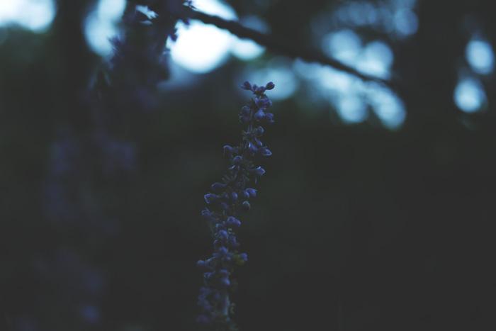 それでも復縁を願う?失恋から立ち直る方法、別れた恋人を忘れる方法。