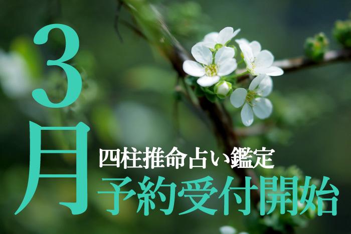 3月四柱推命占い鑑定予約受付開始!