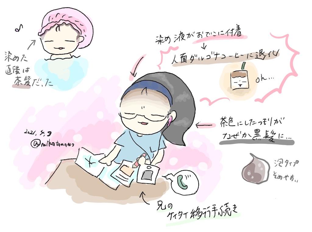 f:id:mikatamamo:20210420225203j:image