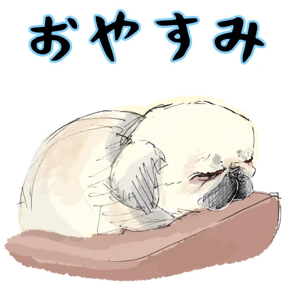f:id:mikatamamo:20210702042628j:image