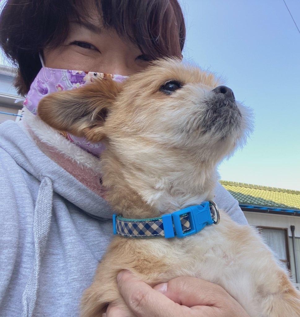 f:id:mikawa-pretty:20200526171810j:image
