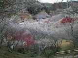 f:id:mikawakinta63:19990112175450j:image