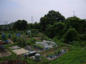 f:id:mikawakinta63:20060708145942j:image