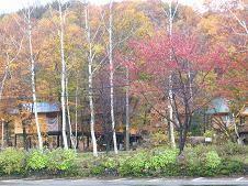 f:id:mikawakinta63:20061111123657j:image