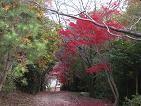 f:id:mikawakinta63:20061128151839j:image