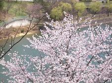 f:id:mikawakinta63:20080328145756j:image