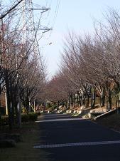 f:id:mikawakinta63:20081203085736j:image