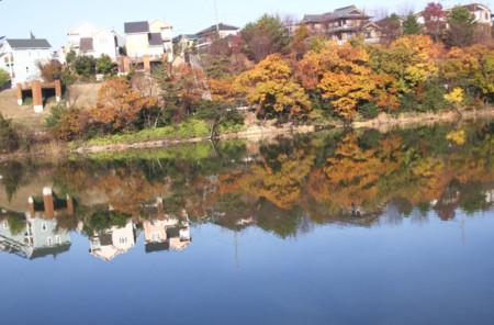 f:id:mikawakinta63:20081203092716j:image