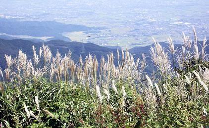 f:id:mikawakinta63:20090901132327j:image