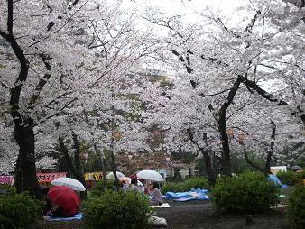 f:id:mikawakinta63:20100401152202j:image