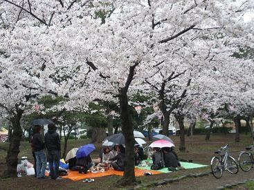 f:id:mikawakinta63:20100401154135j:image