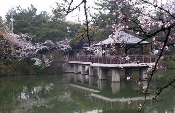 f:id:mikawakinta63:20100401160039j:image