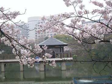 f:id:mikawakinta63:20100401160350j:image