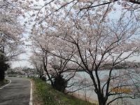 f:id:mikawakinta63:20100404104719j:image