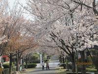 f:id:mikawakinta63:20100404153022j:image