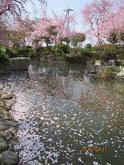 f:id:mikawakinta63:20100407150528j:image