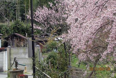 f:id:mikawakinta63:20100409093400j:image