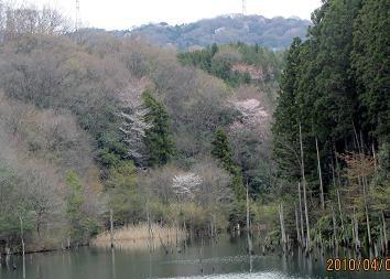 f:id:mikawakinta63:20100409100838j:image