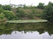 f:id:mikawakinta63:20100622093906j:image