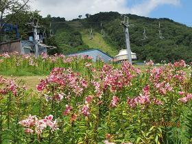 f:id:mikawakinta63:20100818105936j:image