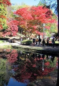 f:id:mikawakinta63:20101119121819j:image