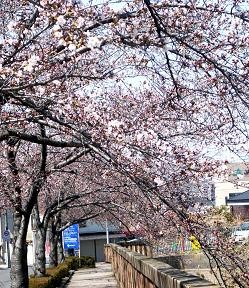 f:id:mikawakinta63:20110401112913j:image