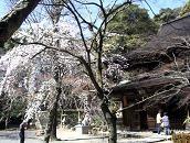 f:id:mikawakinta63:20110406134600j:image
