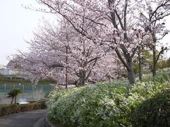 f:id:mikawakinta63:20110411082834j:image