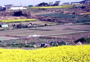f:id:mikawakinta63:20110412090410j:image