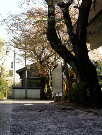 f:id:mikawakinta63:20110414170501j:image