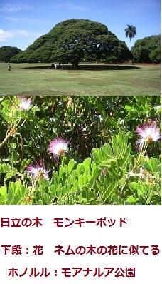 f:id:mikawakinta63:20110904222050p:image:left