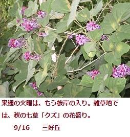 f:id:mikawakinta63:20110916062512j:image:right