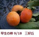 f:id:mikawakinta63:20110917180632j:image:right