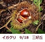 f:id:mikawakinta63:20110918064728j:image:left