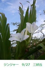 f:id:mikawakinta63:20110927064938j:image:right