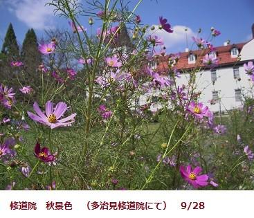 f:id:mikawakinta63:20110928114527j:image:left