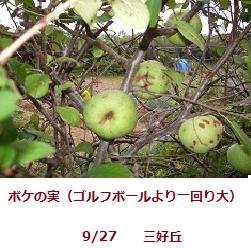 f:id:mikawakinta63:20110930142840p:image:left