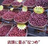 f:id:mikawakinta63:20111031100502j:image:right