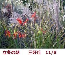 f:id:mikawakinta63:20111108090117j:image:left