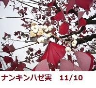 f:id:mikawakinta63:20111110134906j:image:left