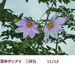 20111112093102