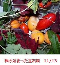 f:id:mikawakinta63:20111113133132j:image:left